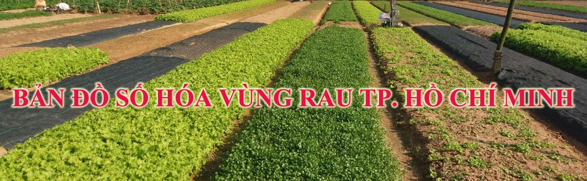 Bản đồ số hóa vùng rau Tp. Hồ Chí Minh