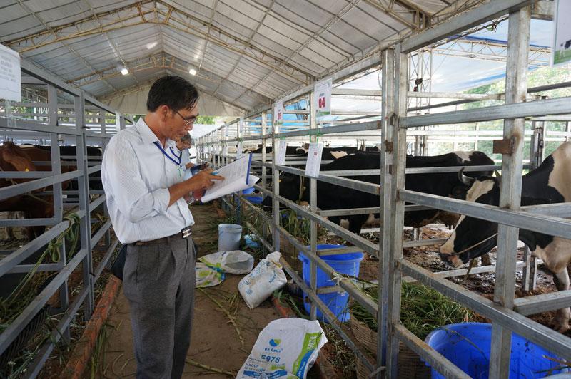 Hội thi Bò sữa, Hội chợ - Triển lãm Chăn nuôi Thành phố Hồ Chí Minh, năm 2018