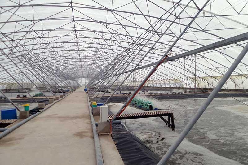 2018- Mô hình nông nghiệp công nghệ cao Việt Nam nào tiềm năng?