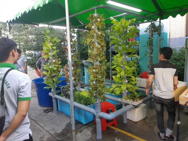 """Hội nghị """"Giới thiệu nông sản an toàn tại quận Phú Nhuận"""""""