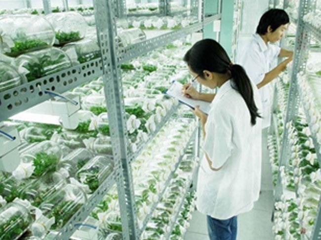 Hiệp định TPP và một số lưu ý đối với lĩnh vực nông nghiệp, nông thôn - Kỳ 02