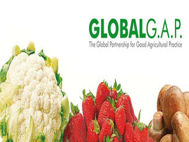 Khóa đào tạo Xây dựng năng lực tư vấn, quản lý trang trại trồng trọt/chăn nuôi theo tiêu chuẩn GlobalGAP