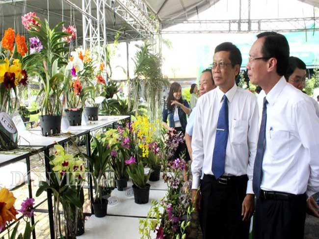 Tiềm năng sản xuất và xu hướng thị trường hoa lan tại Tp.HCM