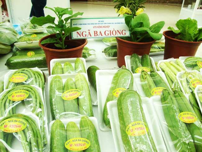 Đẩy mạnh hoạt động truy xuất nguồn gốc rau củ quả VietGAP trong năm 2020