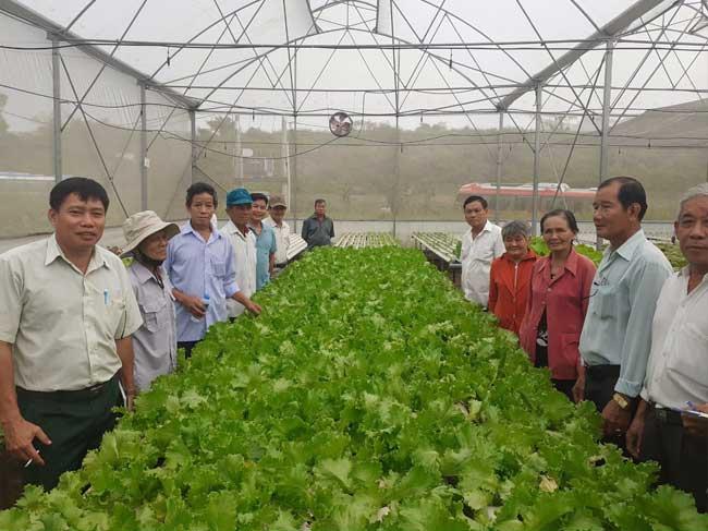 Kết quả tổ chức đưa đoàn nông dân tham quan học tập mô hình xúc tiến thương mại đạt hiệu quả tại các xã Nông thôn mới trên địa bàn Thành phố