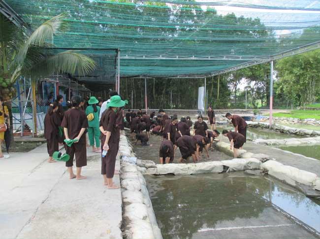 Phát triển du lịch sinh thái nông nghiệp